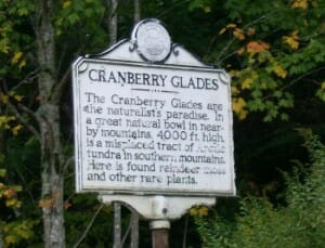 Cranberry Glades