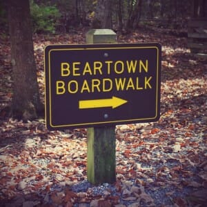 Beartown State Park