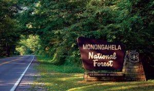 Monongahela-National-Forest