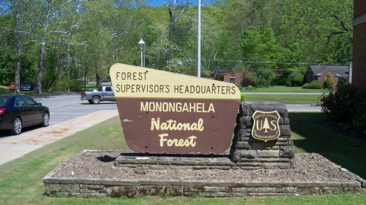 Monongahela National Forest Sign