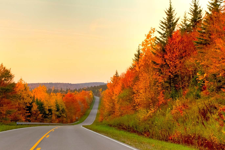 Snowshoe-WV-Autumn-Colors
