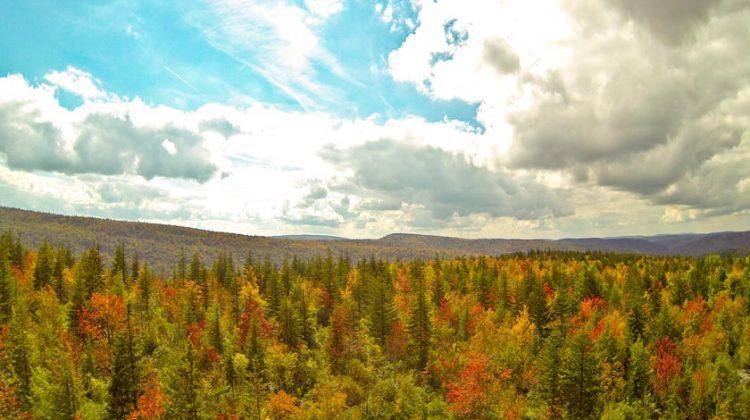 Snowshoe WV Autumn