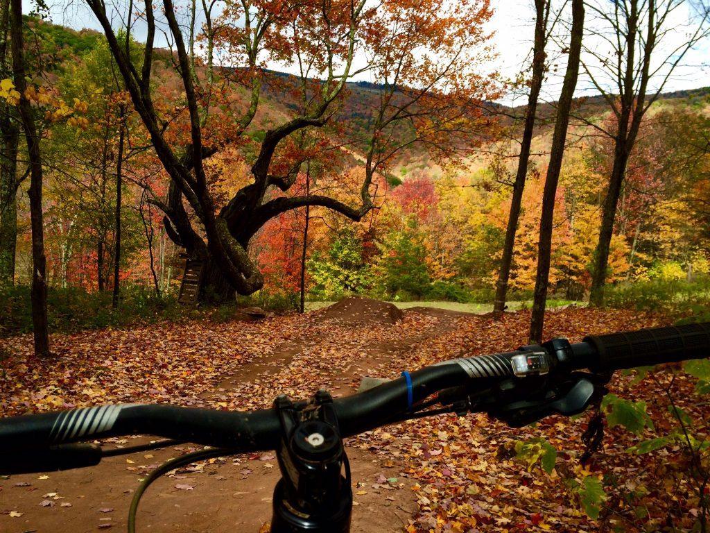 Snowshoe WV Fall Foliage